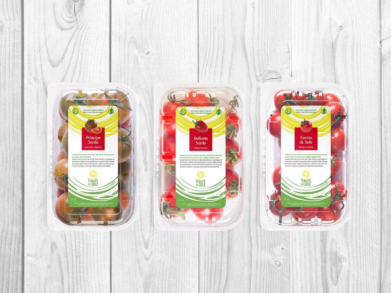 Packaging design confezioni pomodori