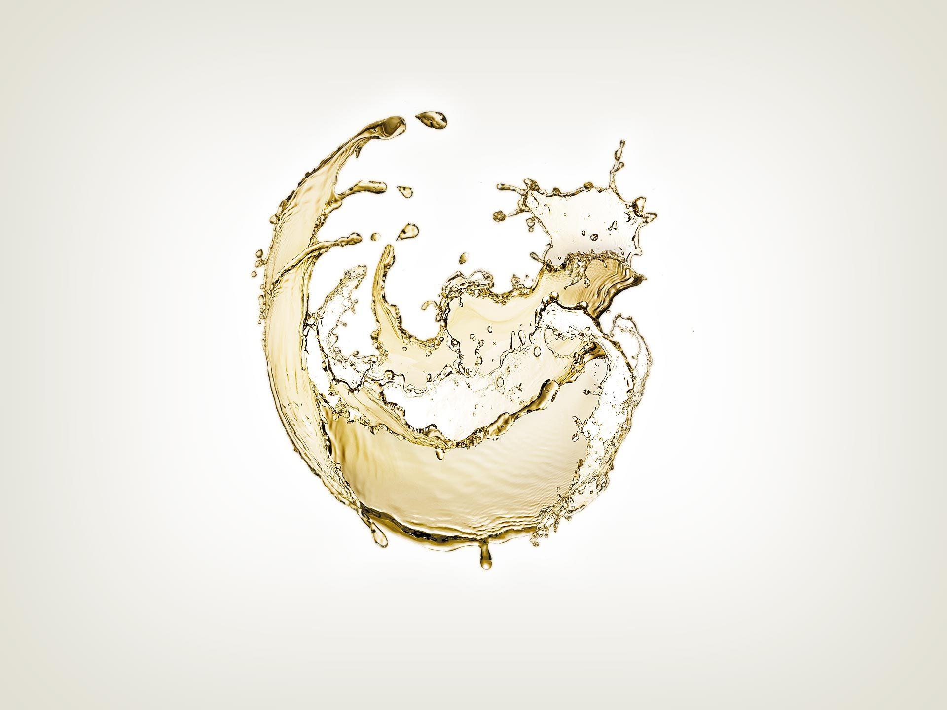 Progettazione logo e corporate identity per Consorzio Vermentino di Gallura