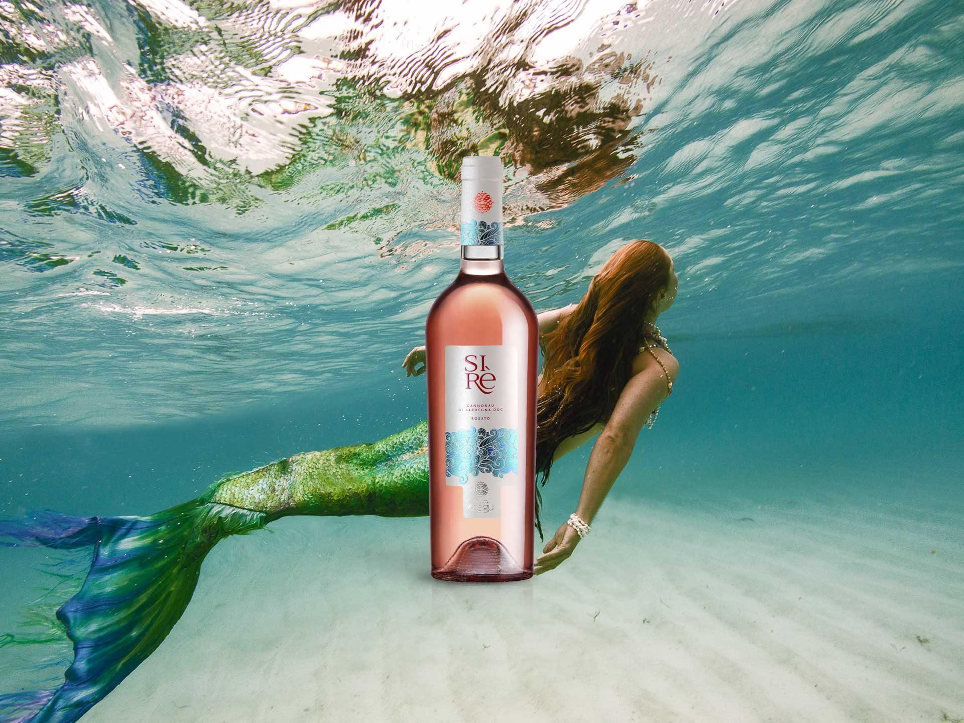 Design etichetta vino Sirè